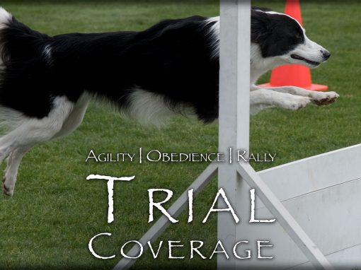 Agility | Obedience | Rally Trial Coverage